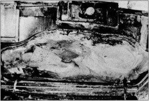 Elkins body