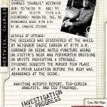WHEN FALL FADES Homicide Report