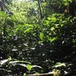 Setting Spotlight: Costa Rica