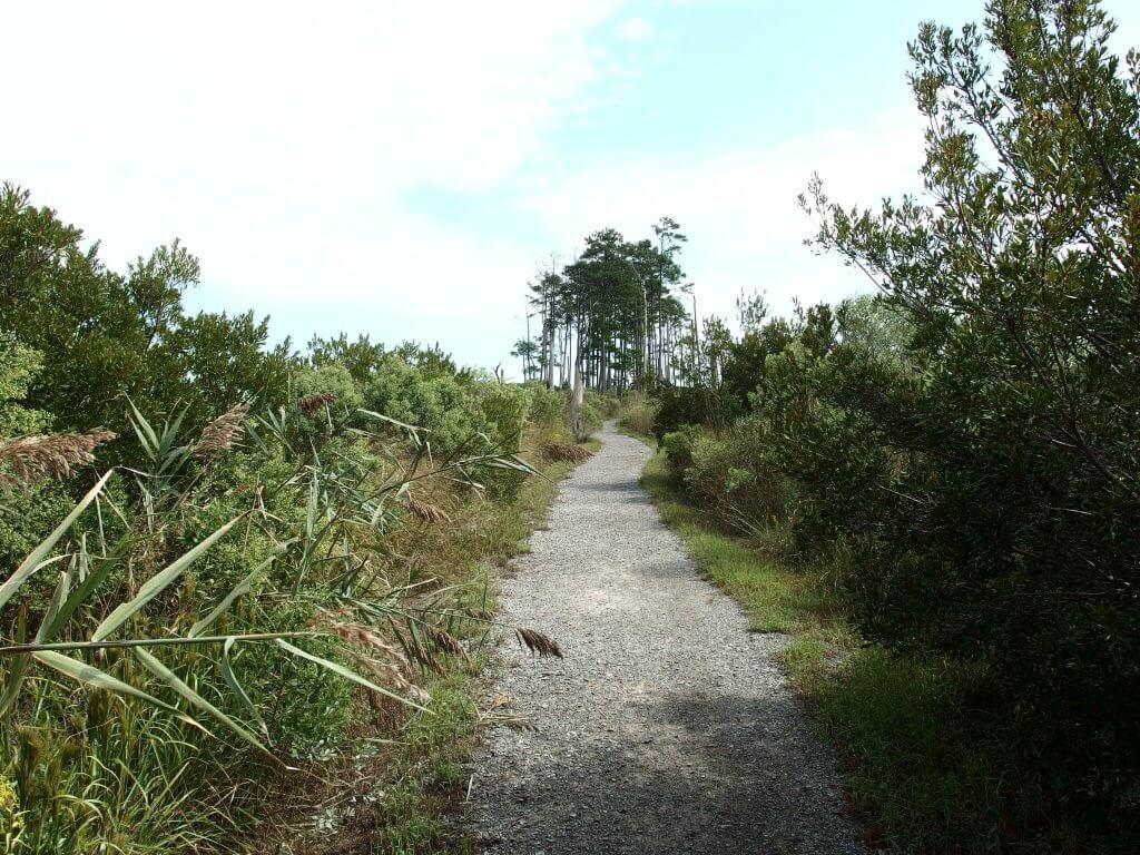 Ragged Island the Walkway