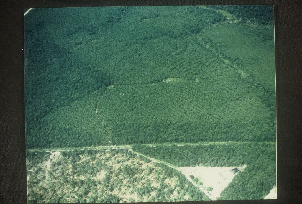 The Logging Trail