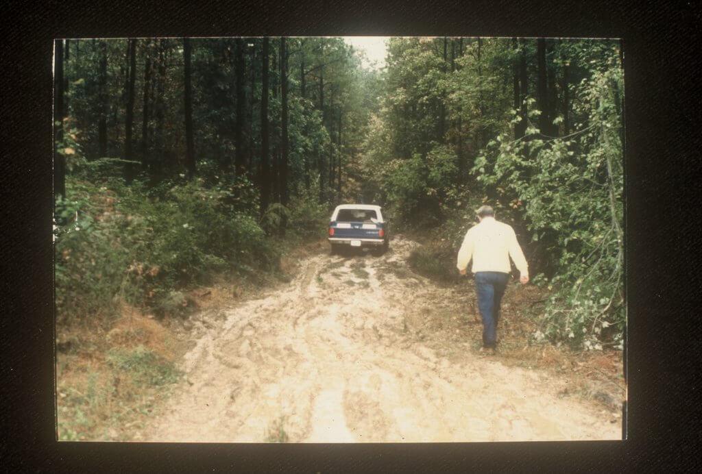 The logging Trail (2)
