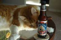 Mitts with beer