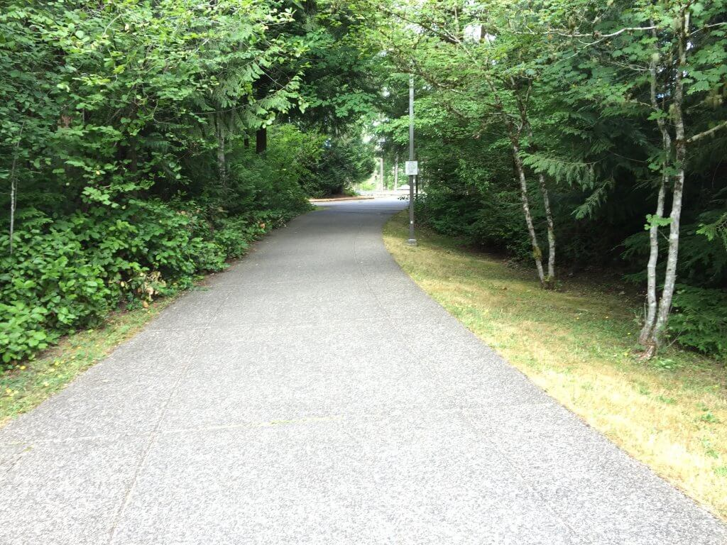 One of the many secluded trails at Evergreen State College in Olympia, Washington where Donna Manson disappeared on March 12, 1974