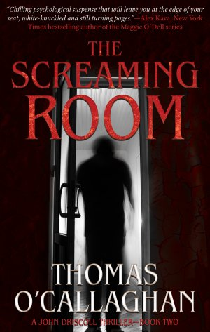 The Screaming Room:  Thriller Books Available
