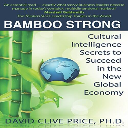 Bamboo Strong: Cultural Intelligence Secrets to Succeed in the New Global Economy